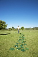 Man walking along trail of green leaves in field