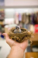 Human hand holding toy bird in nest