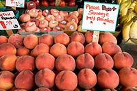 Price tags displayed by fruit market stall