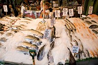 fish market stall and displayed price tags