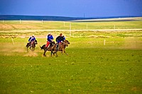 Four people horseback riding in a field, Inner Mongolia, China