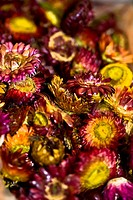 Close_up of dry flowers at a market stall, Tai´an, Shandong Province, China