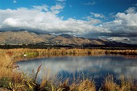 New Zealand _ South Island _ Central Otago _ Wanaka neighbourhood