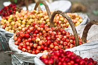 Close_up of cherries at a market stall, Tai´an, Shandong Province, China