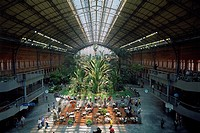 Spain _ Madrid _ tropical garden _ in the old Atocha Station