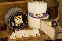 Spain _ Castile and Leon _ Province of Valladolid _ Route of Ribera del Duero _ Sotillo de la Ribera _ Sotillo cheese sheep milk