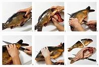 Gutting a carp