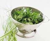 Fresh parsley in a colander