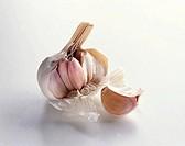 Garlic Bulb with Clove of Garlic