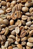 ethiopian jasmine coffee