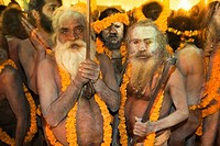 Naga Sadhus preparing for bathing in The holy river Ganges at Kumbh Mela Festival. Allahabad, Uttar Pradesh, India