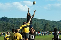 Young men and mid adult men playing rugby