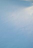Closeup of fresh snow on ground