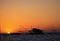 Fishernets, Marina di Pisa, Italy