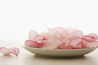 Plate of pink rose petals