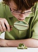 Boy examining frog with magnifying glass