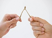 Close up of couple pulling wishbone