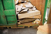 Cardboard in green recycling container