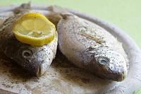zwei frische ganze Fische