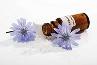 Bottle with Bach Flower Stock Remedy, Chicory Cichorium intybus (thumbnail)