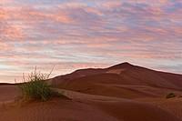 Africa, Namibia, Sossuvlei, Sand dunes