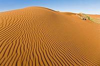 Africa, Namibia, Namib Desert, Sand dune