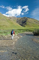 Man fills his water bottle while hiking along Chandalar River in the Brooks Range during Summer in Arctic Alaska