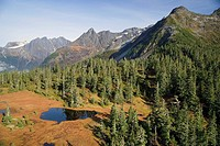 Tarn sits amidst trees and mountains Tongass National Forest Inside Passage southeast Alaska Autumn