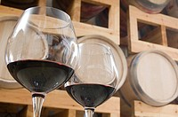 Wine glasses in cellar