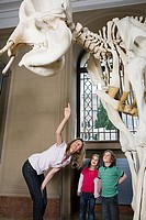 Mother and children looking at an elephant skeleton (thumbnail)