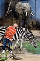 Boy standing by animals in a museum