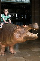 Boy sitting on a hippo in a museum