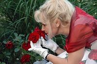 rose duft