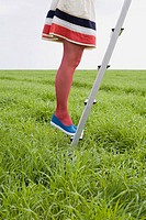 Woman standing on a ladder in a field