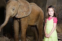 Girl standing beside an elephant in museum