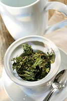HERB TEA Mint infusion.
