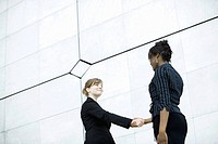 Businesswomen meeting and shaking hands (thumbnail)