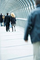 Pedestrians walking across elevated walkway (thumbnail)
