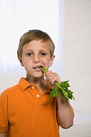 Boy eating celery