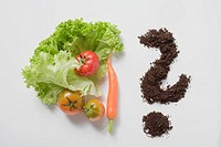 Lettuce leaves, tomatoes, carrot & soil forming question mark (thumbnail)