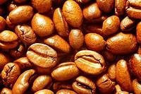 Roasted coffee beans, Arabica coffee