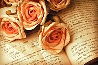Libro y flores de papel