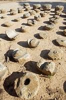 Molinos de mano; Yacimiento arqueológico de Numancia; Garray; Soria; Castilla-León; España