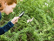 A girl looking at a butterfly with a magnifying glass (thumbnail)
