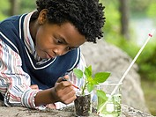 A boy doing an experiment on a plant (thumbnail)