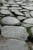 stone pave in the Roma Forum, Via Sacra