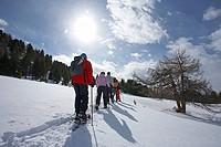 Snowshoe hikers, Nockberge Range, Innerkrems, Carinthia, Austria, Europe
