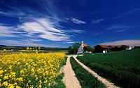 St. Veit near Bad Birnbach, Lower Bavaria, Germany, Europe