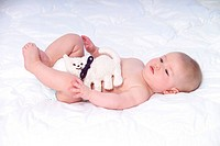 Five_month_old infant laying on a white blanket with a stuffed cat, plush cat