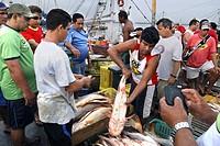 Fish market Ver-O-Peso in Belem, Para, Brazil